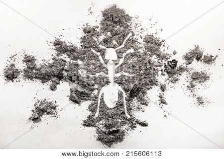 Ant or termite silhouette drawing made in ash dirt or dust as pest symbol invasive insect intrusive bug or insecticide and exterminator concept background