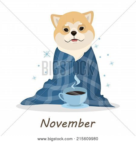 Shiba Inu dogs calendar. November month with dog in blanket with hot coffee.