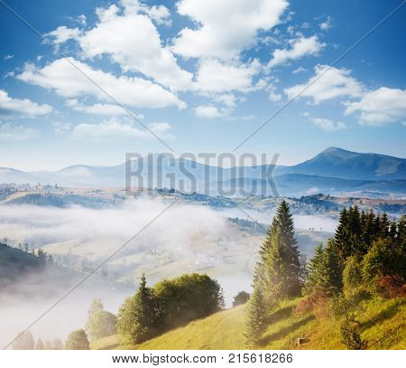 Misty alpine highlands in sunny day. Location Carpathian national park, Ukraine, Europe. Picture of wild area. Scenic image of hiking concept. Adventure vacation. Explore the beauty of earth.