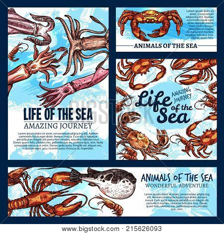 Sea life fishes and animals sketch banners and posters templates. Vector design of mollusk or tropical fishes and crustaceans squid, exotic octopus or lobster crab and shrimp in oceanarium