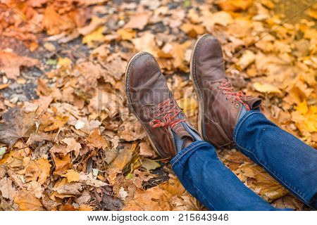 Close-up of a man's legs in brown shoes, in fallen leaves in a park on fresh air.