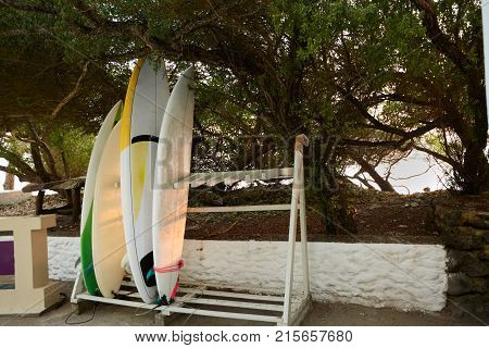 Surfboards on stand at a surf spot in Maldives. Surfers left their surfing boards.