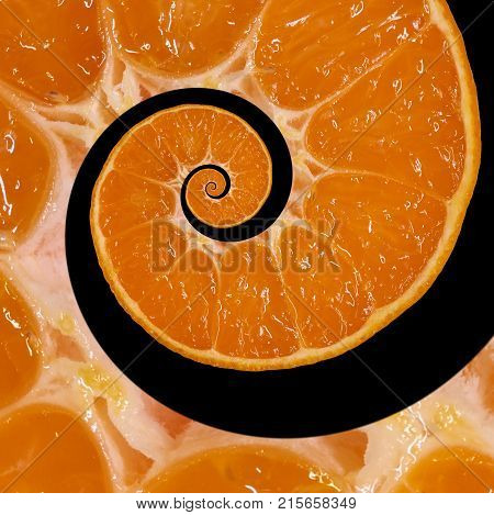Isolated on black orange slice spiral swirl abstract fractal background. Orange slice spiral background pattern. Impossible abstract orange food fractal background. Surreal orange mandarin fruit swirl abstract fractal