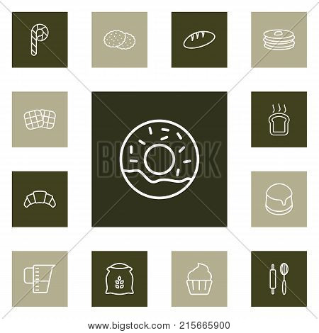Collection Of Cookie, Candy Cane, Waffle Elements.  Set Of 13 Cooking Outline Icons Set.