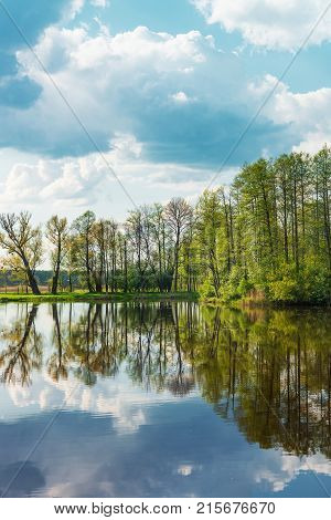 Trees and sky reflecting in a pond at Bialowieza National Park as a part of the Belovezhskaya Pushcha National Park in Poland.