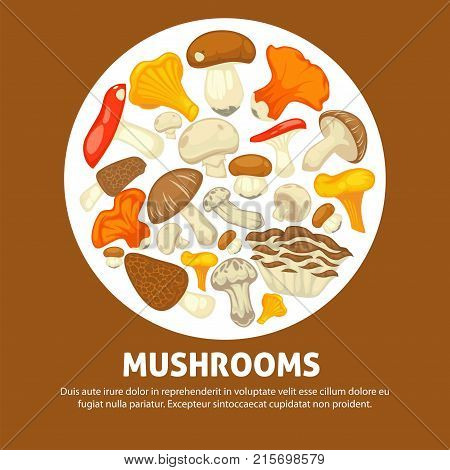 Edible species of ripe forest mushrooms in messy heap placed inside white circle on promotional banner with small sample text underneath cartoon flat vector illustration on brown background.