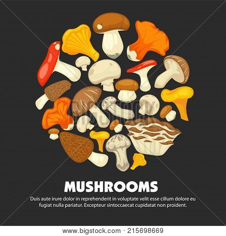 Organic ripe mushrooms of all edible species grown at forest collected in neat heap of round shape on promotional poster with small sample text cartoon flat vector illustration on dark background.