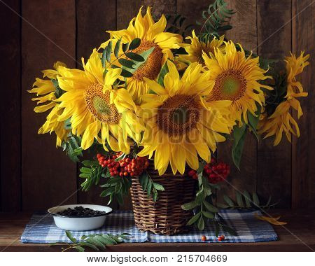 Beautiful bouquet of sunflowers and branches of mountain ash in the basket. Still life with flowers and berries.
