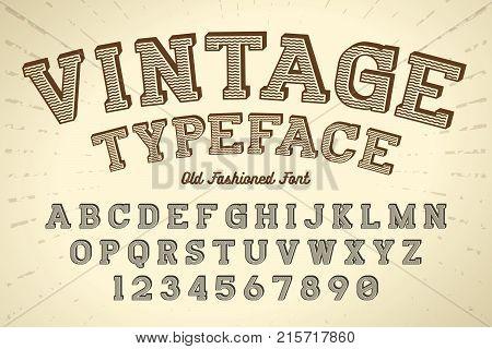 Decorative vector vintage retro typeface font typeface