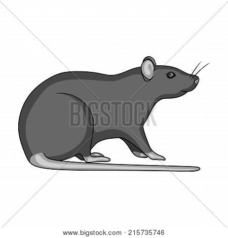 Rodent rat single icon in monochrome style for design.Pest Control Service vector symbol stock illustration .