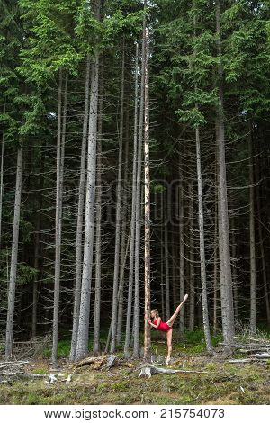 Young ballerina stands on pointe near the dry pine on the background of the coniferous forest. She wears a red leotard and ballet shoes. Girl holds her hands on the tree and stretches left leg upward.