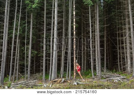 Nice ballerina presses her outstretched right leg on the dry pine on the background of the coniferous forest. She wears a red leotard and ballet shoes. Girl holds her hands on the tree. Vertical.