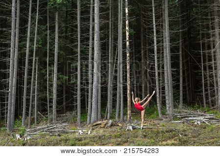 Wonderful ballerina posing on the background of the coniferous forest. Girl stands on the right toe and outstretching her left leg and arms upward. She wears a red leotard and ballet shoes.