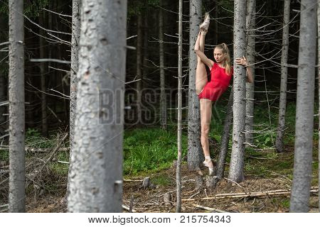 Ballerina with closed eyes stands on the left toe and holds hand on the dry tree on the background of the coniferous forest. She wears red leotard and ballet shoes. Her right leg outstretched upward.