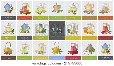Big collection of labels or tags with various types of tea - black, green, rooibos, masala, mate, puer. Set of hand drawn tasty flavored drinks, teapots, cups and spices. Colorful vector illustration