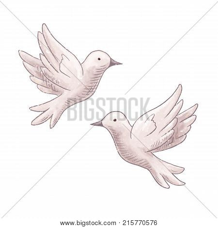 Flying Dove Couple Isolated On Vector Photo Bigstock
