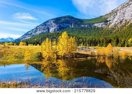 Rocky Mountains are reflected in the smooth water of Lake Abraham. Sunny September Day. Concept of ecological and active tourism