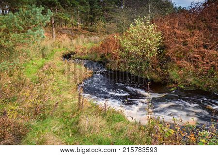 River Wansbeck leaves Sweethope Lough, which rises