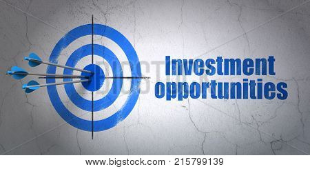 Success finance concept: arrows hitting the center of target, Blue Investment Opportunities on wall background, 3D rendering