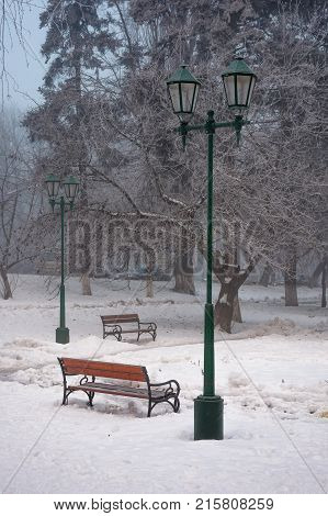 City Park With Benches And Lantern In Hoarfrost