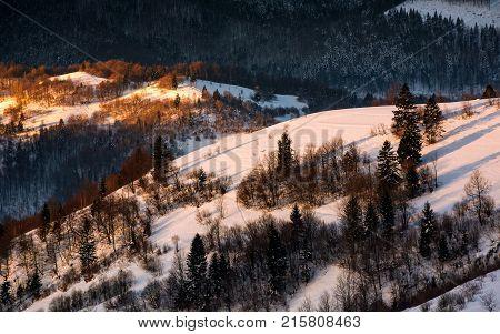 Winter Sunrise In Carpathian Mountains