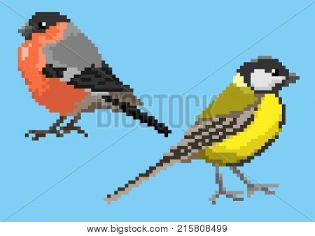 Pixelated titmouse and bullfinch isolated on a blue background.
