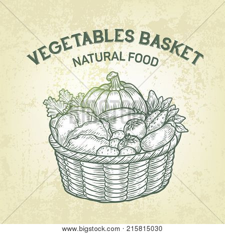Vector basket with fresh vegetables. Realistic sketch of garden food, outline, retro design. Simple label of vegetarian food is good for advertisment of farm products or recipe book design.
