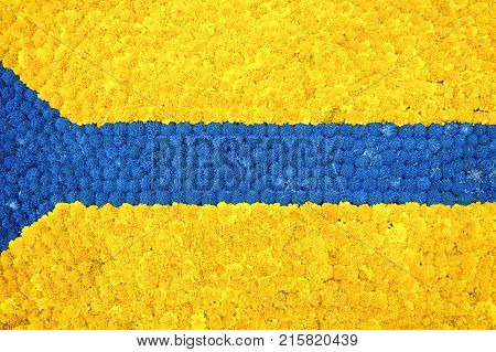 Beautiful bright floral background made of yellow marigold blue allium bulbs . Flag made from flowers. Festive flower composition