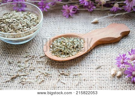 Dry leaves eucalyptus in wooden spoon on sackcloth background. Medicinal herb eucalyptus in alternative herbal medicine. Health benefits of eucalyptus for respiratory health strengthen the immune system protect skin health