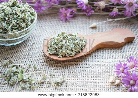 Cut dry leafs of coltsfoot (Tussilago farfara L.) in wooden spoon on sackcloth background. Drug (Farfarae folium) for treatment lung problems: bronchitis asthma whooping cough. Herbal alternative medicine.