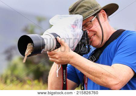 Santiago Island, Ecuador - April 22: Friendly Galapagos Flycatcher Sitting On A Lens Hood Of Unident