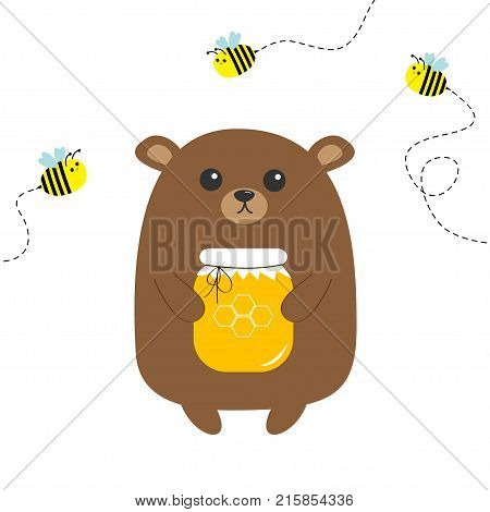 Grizzly brown bear holding honey jar with honeycomb. Flying bee insect. Dash line track. Cute cartoon funny kawaii character. Forest baby animal collection White background Isolated Flat design Vector