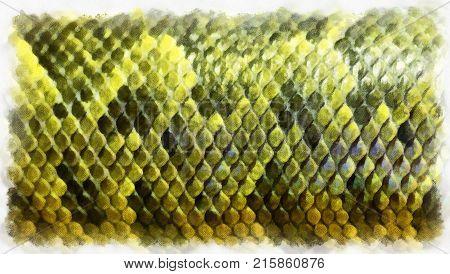 Boa skin pattern, digital art generated painting