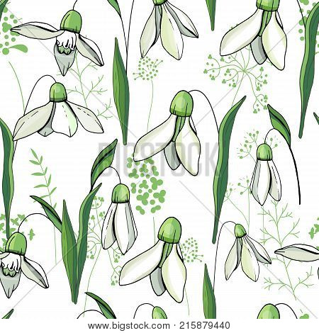 Seamless Floral Decorative Pattern With Snowdrops. Endless Texture For Your Design, Fabrics, Decor.
