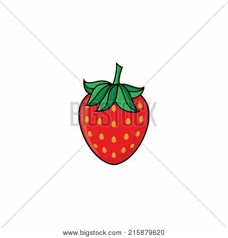 vector flat sketch style red fresh ripe strawberry. Isolated illustration on a white background. Healthy vegetarian eating, dieting and lifestyle design object.