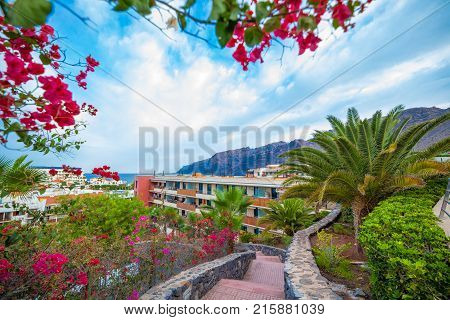 Beautiful Bougainvillea flowers and palm tree near accommodation area in Tenerife city Spain