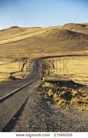 Llama Trail
