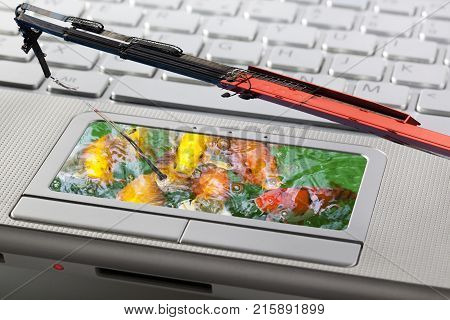 Phishing attack of computer system concept with fishes and a crane as rod