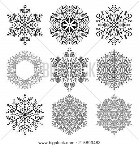 Set of vector black and white snowflakes. Fine winter ornaments. Snowflakes collection. Snowflakes for backgrounds and designs