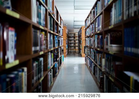 Books On Bookshelves In Public Libery.