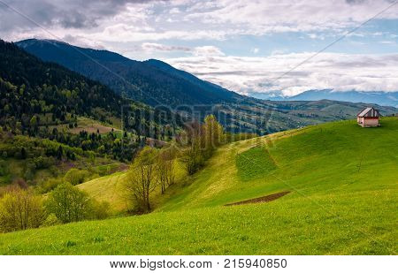 wooden shed on grassy hillside. lovely springtime scenery in mountainous rural area on a cloudy day