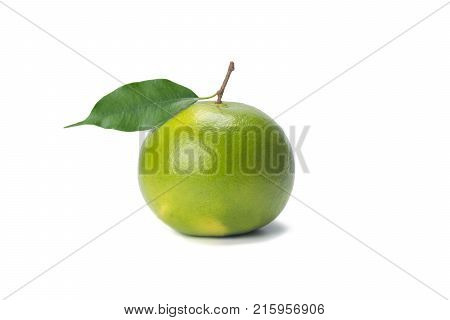 Sweetie green citrus with branch and leaves isolated on white background