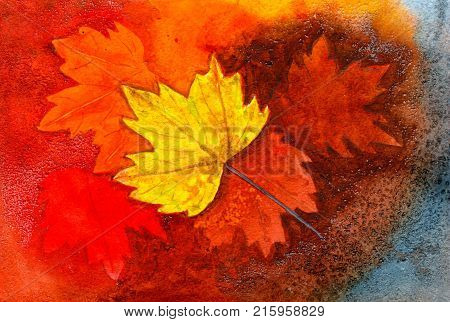 Multicolored fallen autumn leaves, hand-painted watercolor illustration and paper texture