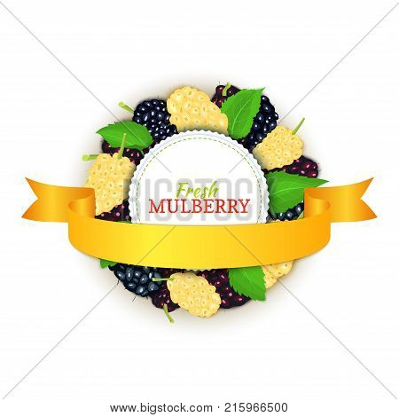 Round colored frame composed of delicious mulberry fruit and gold ribbon, Vector card illustration. Mulberry berries, Circle frame for design of food packaging juice breakfast cosmetics tea detox diet