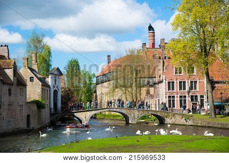 Bruges, Belgium - April 17, 2017: Swans in lake of love in Bruges, channel panoramic view near Begijnhof