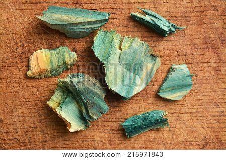 xylindein pigment on wood due to Chlorociboria Aeruginascens fungus