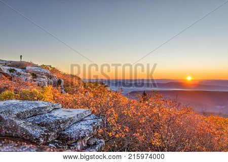 Morning Dark Sunrise With Sky And Golden Yellow Orange Autumn Foliage In Dolly Sods, Bear Rocks, Wes