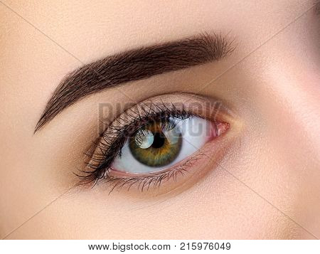 Close Up View Of Beautiful Brown Female Eyes