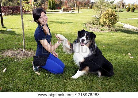 Professional Dog Handler Training Male Purebred Awesome