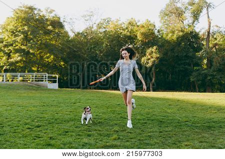 Girl Throwing Orange Flying Disk To Small Funny Dog, Which Catching It On Green Grass. Little Jack R